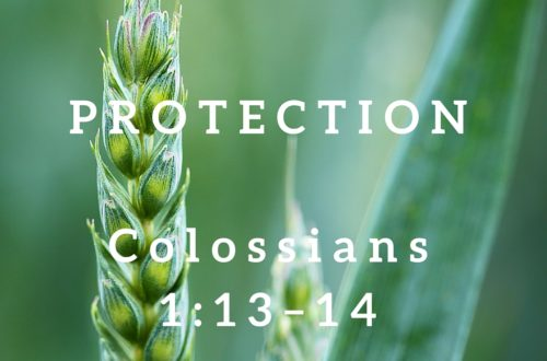 Colossians 1:13–14
